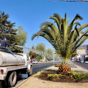 Con rehabilitación de camellones en Toluca se coadyuva a la prevención del delito