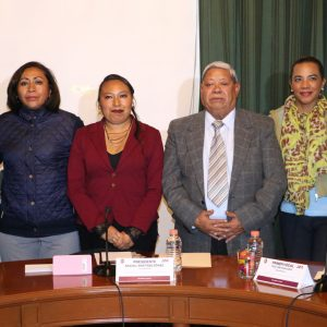 Instalan la Comisión de Protección e Inclusión a Personas con Discapacidad