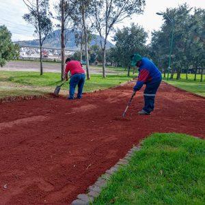 Rehabilitan autoridades de Toluca Parque Alameda 2000