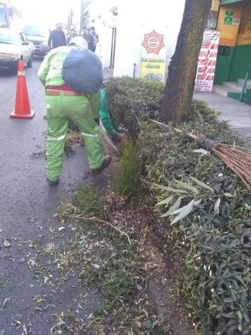 En Toluca, trabajos permanentes de limpieza en camellones y áreas verdes