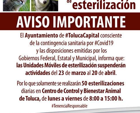 Ante contingencia, autoridades de Medio Ambiente de Toluca suspenden actividades