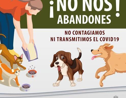 Por contingencia, suspende Toluca actividad en Centro de Control y Bienestar Animal