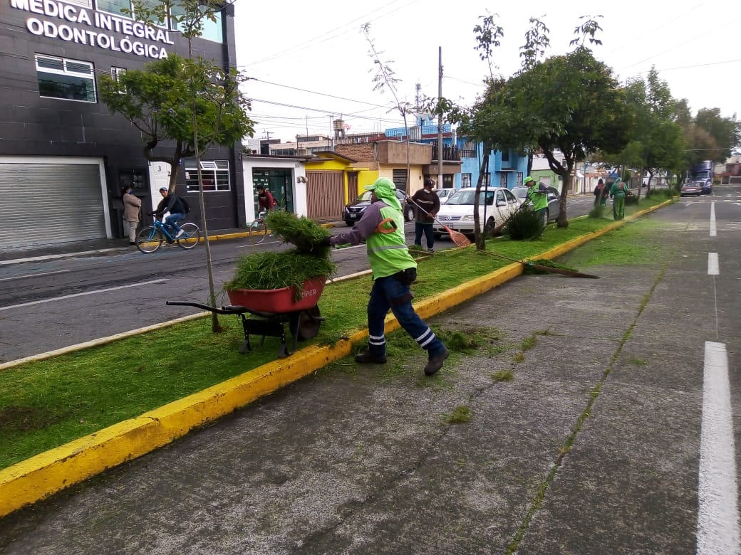 Refuerza Toluca acciones de mantenimiento en áreas verdes