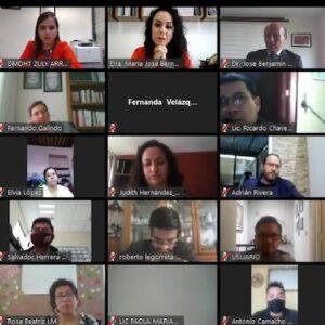 Un éxito Webinar de Derechos Humanos sobre la nueva normalidad en Toluca