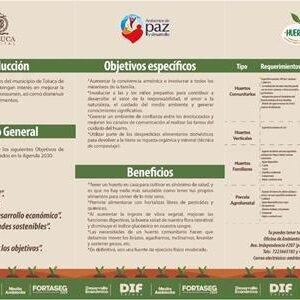 Ambientes de Paz y Desarrollo llega a San Andrés Cuexcontitlán