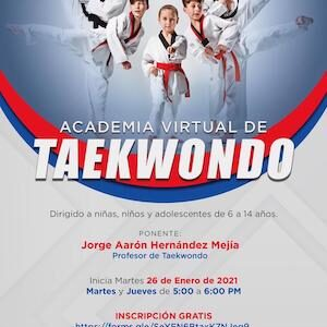 Inicia en Toluca Academia Virtual de Taekwondo